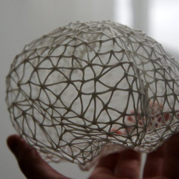 3D-GEPRINT BREIN